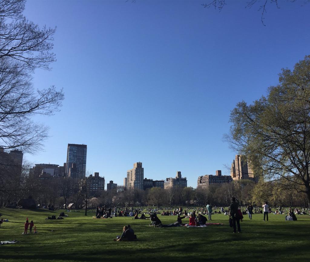 Visiter New York en 10 jours avec New York Off Road