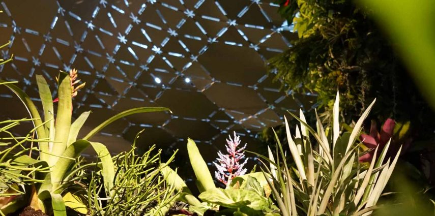 Photo : Lowline Lab