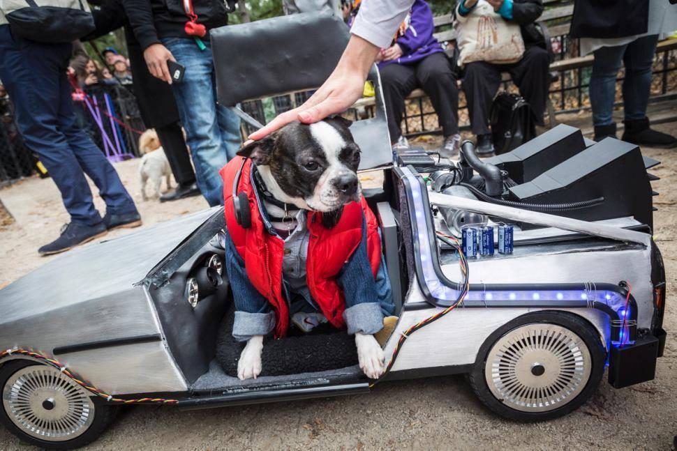 Tompkins Square Park Dog Parade