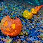 Que faire pour Halloween à New York, le blog New York Off Road