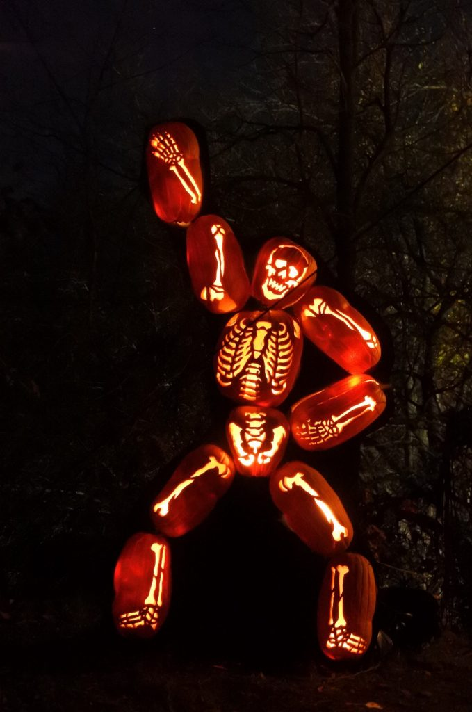 The Great Jack O'Lantern Blaze Skeleton